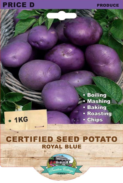 Picture of CERTIFIED SEED POTATO - ROYAL BLUE
