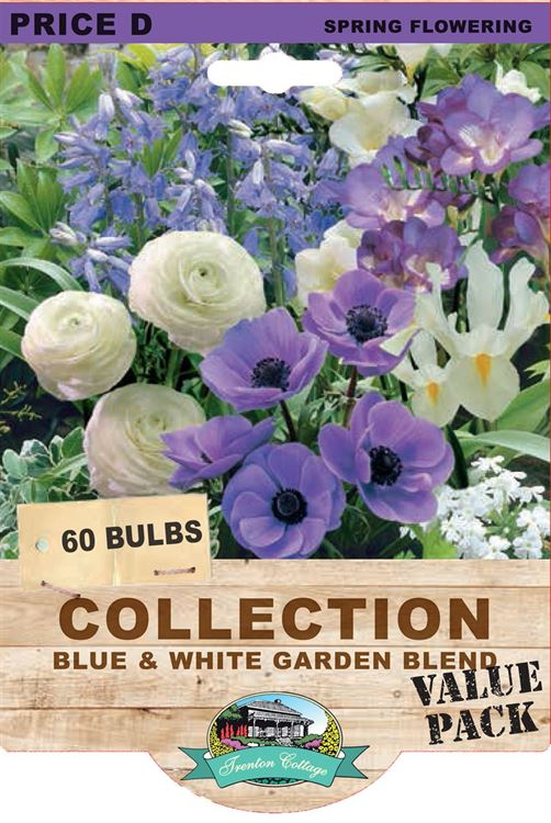 Picture of COLLECTION - BLUE & WHITE GARDEN BLEND