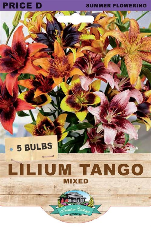 Picture of LILIUM TANGO - MIXED